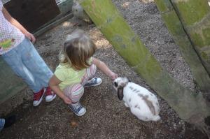 Alimentando o coelhinho da Páscoa.